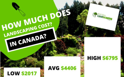 Landscaping Costs 2020