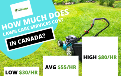 Lawn Care Services Cost