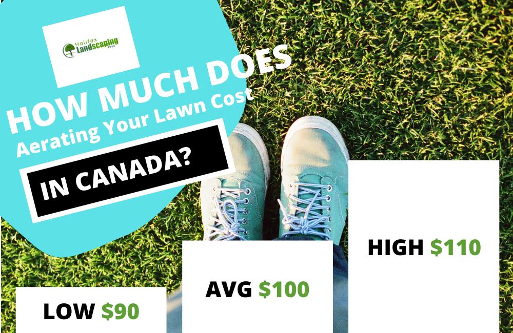 How much does aerogating your lawn cost in canada