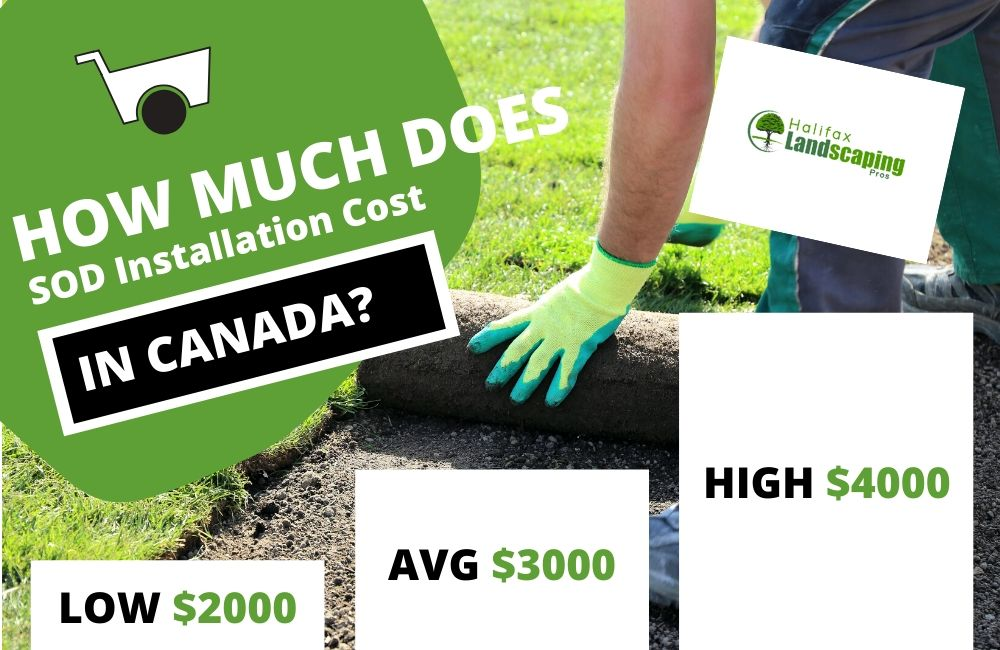 How much does Sod Installation cost in Canada?