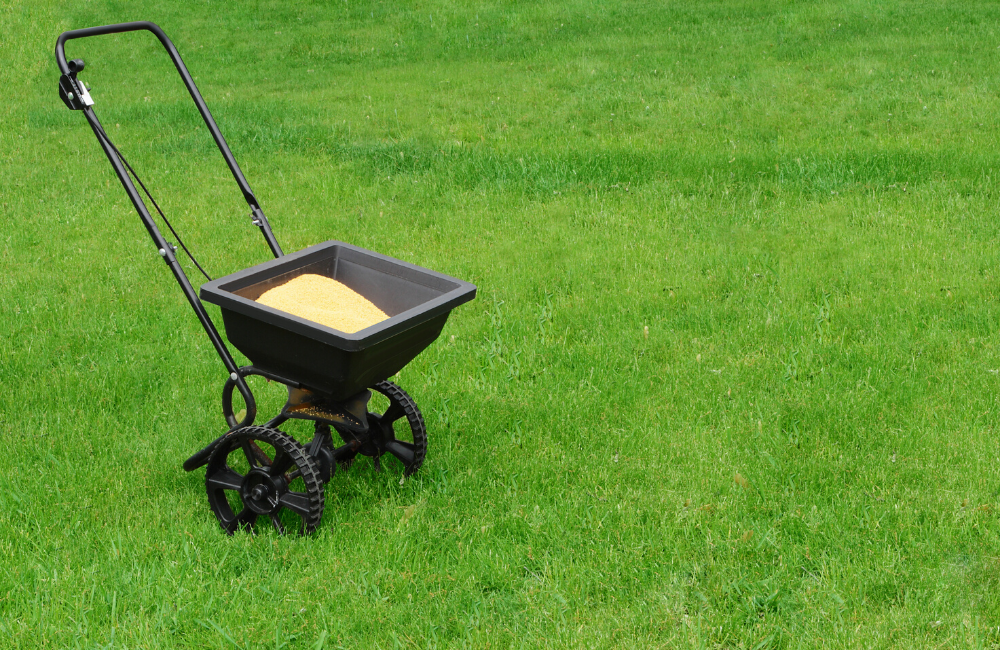 5 Key Lawn Maintenance Tips To Dominate Your Property when to fertilize a lawn