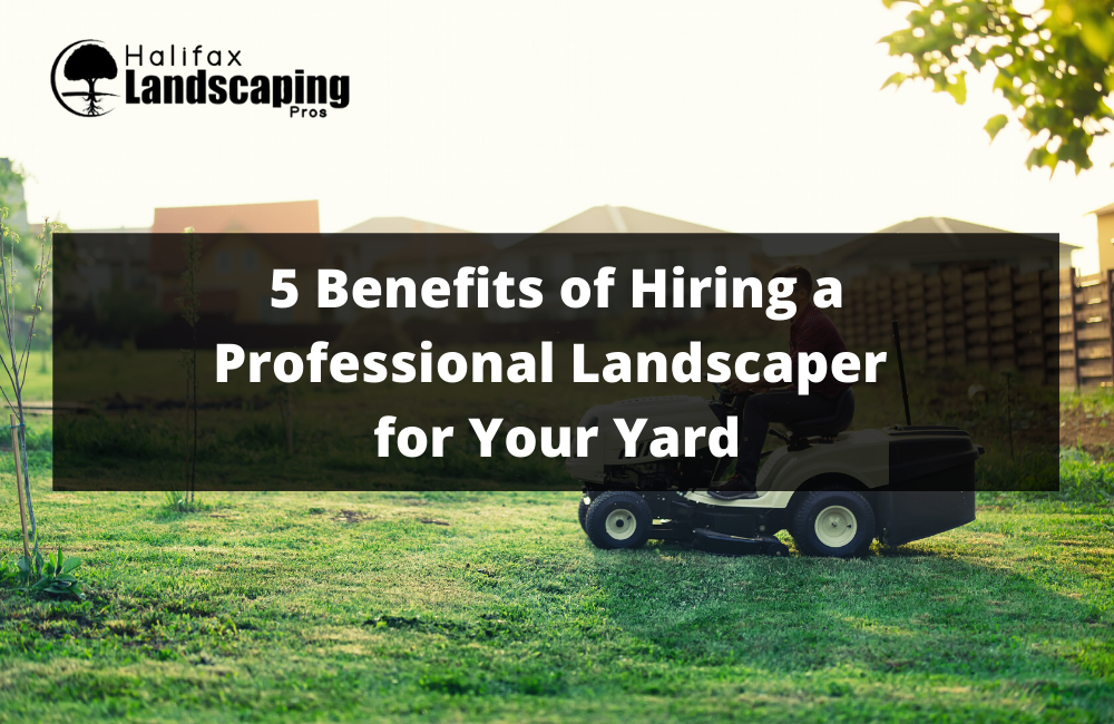 5 Benefits of Hiring a Professional Landscaper for Your Yard