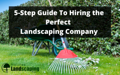 A 5-Step Guide To Hiring the Perfect Landscaping Company