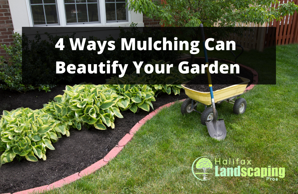 4 Ways Mulching Can Beautify Your Garden