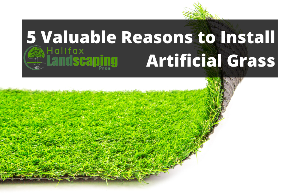 5 Valuable Reasons to Install Artificial Grass