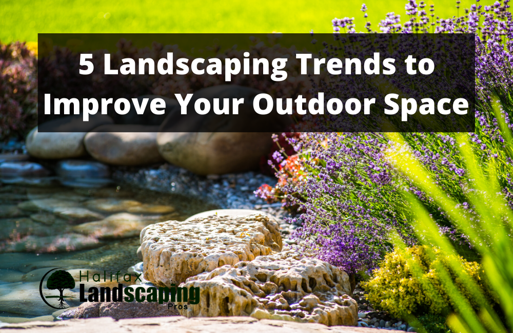 5 Landscaping Trends to Improve Your Outdoor Space